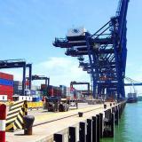 Desarticulan banda que contaminaba contenedores con droga en puerto de Panamá
