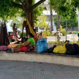 Córdoba figura entre los más afectados por desplazamientos en el Caribe