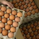 Huevos han subido hasta en un 46% en Barranquilla