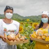 Con girasoles a bordo, el níspero y mango se estrenan en la ruta gastronómica de Sazón Atlántico