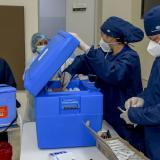 EPS plantean abrir vacunación para todos a partir de los 12 años