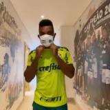 Miguel Borja se reporta con el Palmeiras