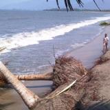 Inician estudios y diseños para frenar erosión en Ciénaga, Magdalena
