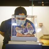 Con arte abstracto del Caribe reabre el Museo Mapuka
