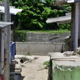 Asesinan a bala a hombre en el barrio Colombia, de Malambo