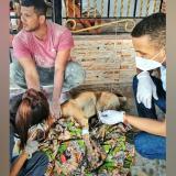 Hombre agredió a un perro con machete y Policía lo capturó