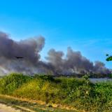Incendios forestales asfixian el paisaje y devoran ecosistemas