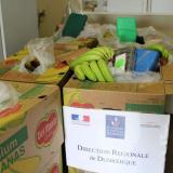 Decomisan en Francia 416 kilos de cocaína en cajas de bananos de Colombia