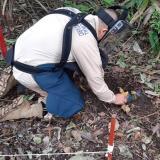 Sucre, entre las cuatro nuevas áreas libres de minas antipersonas