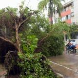 Las emergencias por precipitaciones en Barranquilla y los municipios