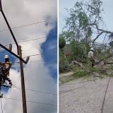 Continúan trabajos de reparación de redes eléctricas tras vendaval en Córdoba