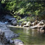 Corpamag adoptó Porh sobre la corriente del río Manzanares