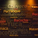 Diez expresiones curiosas que los colombianos utilizan diariamente