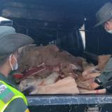 Decomisan cerca de una tonelada de carne de res por falta de documentación