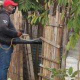 Alerta por dengue en Aguachica: van dos menores fallecidos
