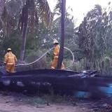 Queman embarcación de pescadores en Coveñas
