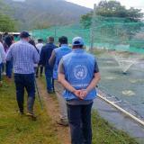 ONU reporta el asesinato de 43 líderes sociales entre junio y septiembre