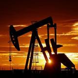 Producción de petróleo aumentó en 0,7% en agosto