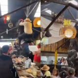 Denuncian maltrato animal tras caída de caballo en un restaurante de Bogotá