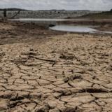 """""""Cerca de seis millones de personas"""" migraron a causa de desastres climáticos en Latinoamérica"""""""