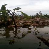 Familias claman ayuda por inundaciones en Cabica, Soledad