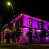 Barranquilla y el Atlántico se visten de rosa