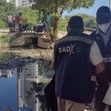 Dengue: alarma en Cartagena por proliferación de la enfermedad