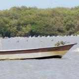 Minambiente abre convocatoria para financiar proyectos ambientales