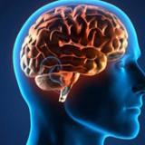 Hackear el cerebro