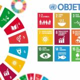 Replantear las Metas ODS