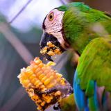 ¡El Zoológico de Barranquilla los está esperando!