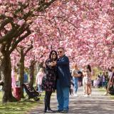 Las mejores tomas de la primavera en Londres