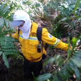 """""""La gente pocas veces es consiente del daño que hacen los incendios"""": brigada forestal de Isla Salamanca"""
