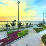 Barranquilla en la bienal