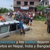 En video   Elefantes rescatan turistas en medio de inundaciones en Nepal