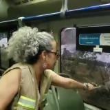En video | Transmetro rechaza ataque a piedra contra buses en la Murillo