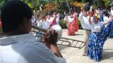 Comienza el Festival del Porro, en San Pelayo