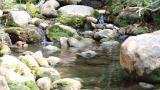 Desviación del arroyo Bruno se debate en foro en Riohacha