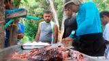 118 peces León atrapados en el Parque Tayrona fueron consumidos por turistas