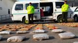 En video   Caen 416.000 dosis de marihuana que distribuían en microbús escolar