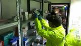 Cae red que traficaba con medicinas vencidas