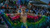 La reina del Carnaval, Valeria Abuchaibe Rosales, fue un colibrí gigante con su vestido 'Vuelo de Fantasía', con el que hizo homenaje a las aves del Caribe.