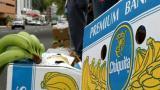 A juicio funcionarios de Chiquita Brands por financiamiento de paramilitares