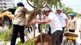Alcalde Char siembra el árbol número 23.000 en Barranquilla