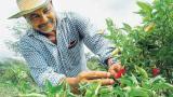 La LEC estaba destinada a los pequeños agricultores por la emergencia
