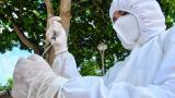 Aumento de casos en Barranquilla no es por nueva variante