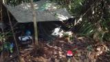 Policía revela incidencia del Eln en actos de vandalismo durante protestas
