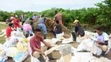 Continúan trabajando en puntos críticos del sur para prevenir inundaciones