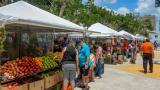 Galería | El mercado itinerante que llega a los barrios
