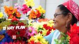 Sí Hay Plan   Arte, salud y bienestar para celebrar a las mujeres